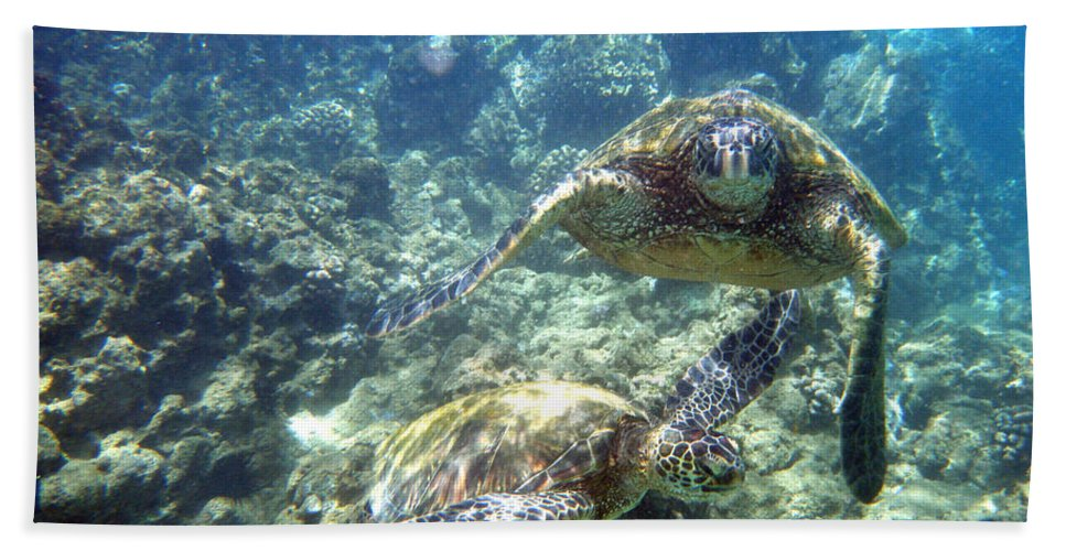 Sea Turtles Hand Towel featuring the photograph Just The Two Of Us by Angie Hamlin