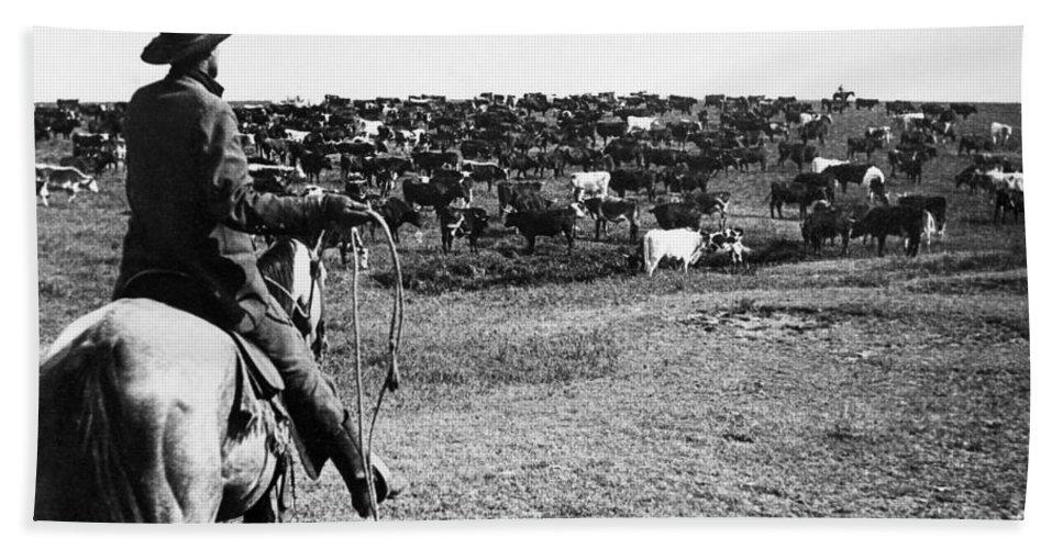 1890 Bath Sheet featuring the photograph Kansas: Cattle, C1900 by Granger