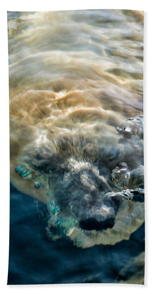 Tulsa Bath Sheet featuring the photograph Kavek by Lana Trussell
