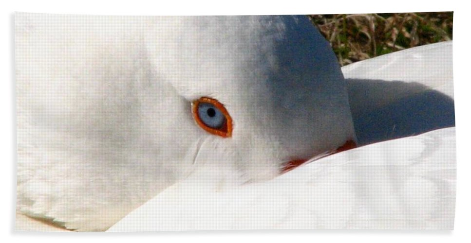Geese Bath Towel featuring the photograph Keeping A Watchful Eye by J M Farris Photography