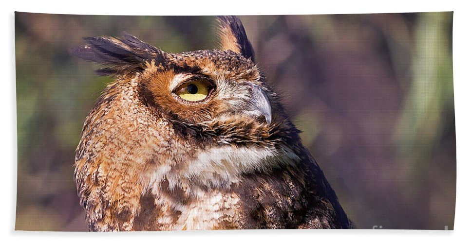 Owl Hand Towel featuring the photograph Keeping Watch by Sharon McConnell