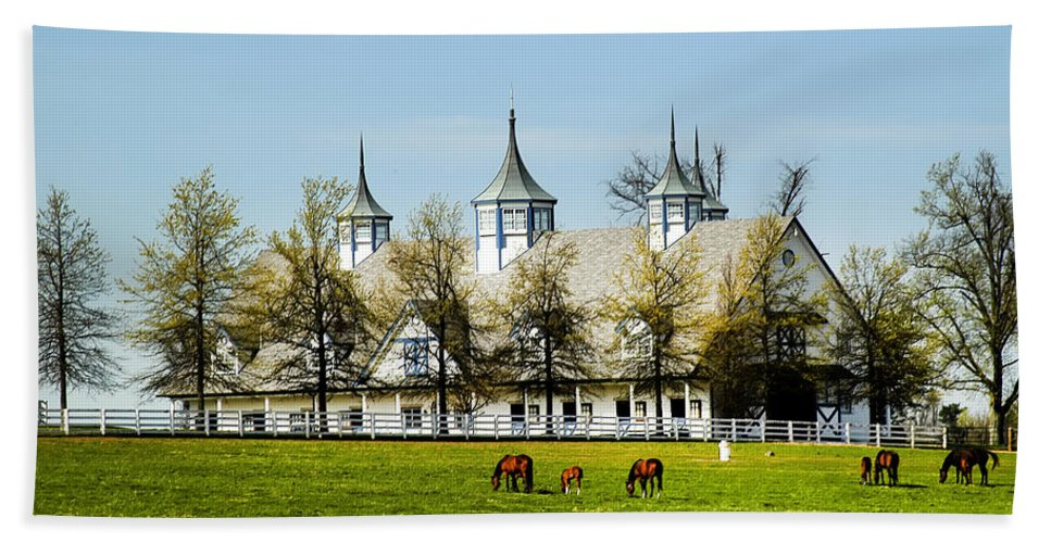 Kentucky Horse Barn Hotel Hand Towel featuring the photograph Revised Kentucky Horse Barn Hotel 2 by Randall Branham