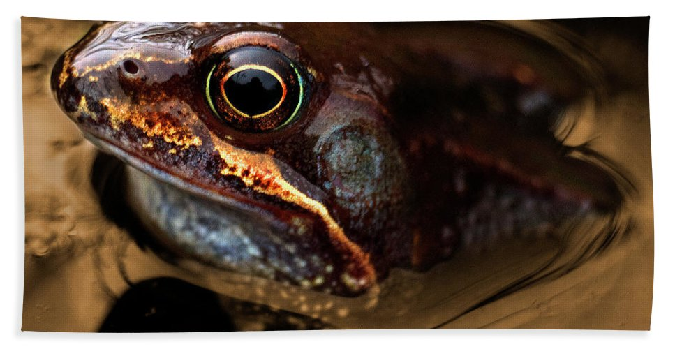 Frog Hand Towel featuring the photograph Kermitt In Bronze by Rob Hawkins