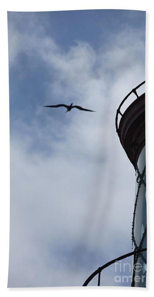 Kilauea Hand Towel featuring the photograph Kilauea Lighthouse And Bird by Nadine Rippelmeyer