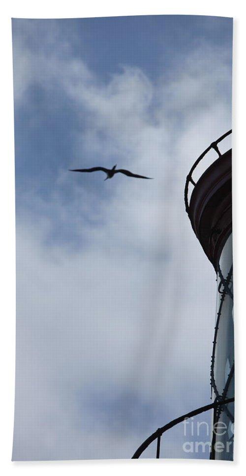 Kilauea Bath Sheet featuring the photograph Kilauea Lighthouse And Bird by Nadine Rippelmeyer