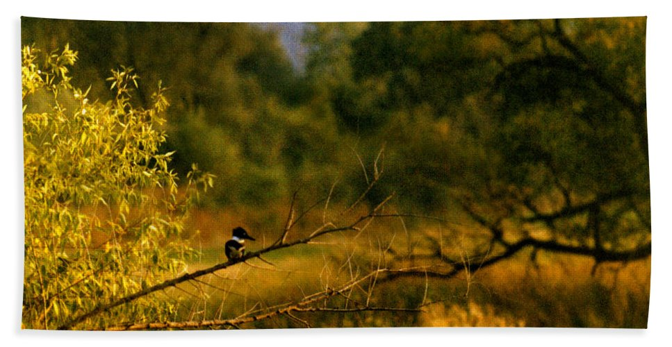 Landscape Bath Towel featuring the photograph King Fisher by Steve Karol