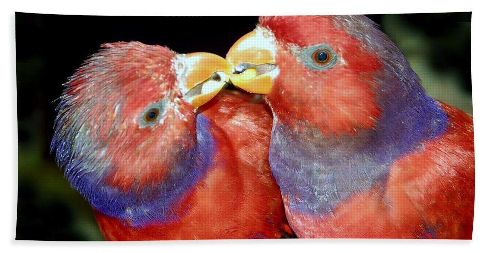 Kissing Hand Towel featuring the photograph Kissing Birds by David Lee Thompson