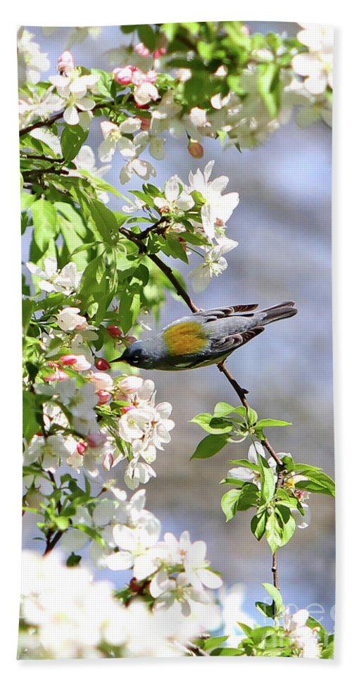 Bird Bath Sheet featuring the photograph Kissing Flowers by Marle Nopardi