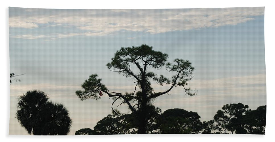 Kite Bath Towel featuring the photograph Kite In The Tree by Rob Hans