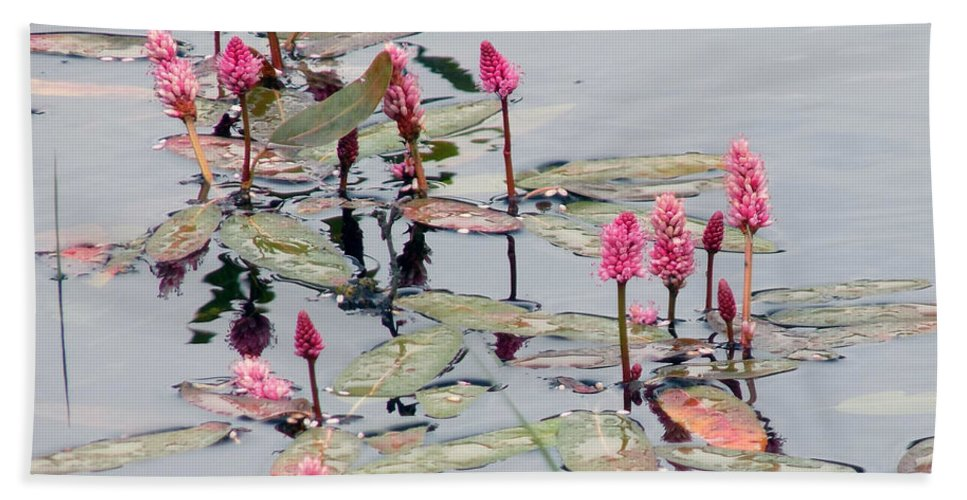 Wildflower Hand Towel featuring the photograph Knotweed by William Tasker