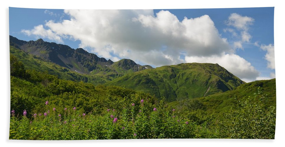 Nature Hand Towel featuring the photograph Kodiak Greenery by Sheila McCleary