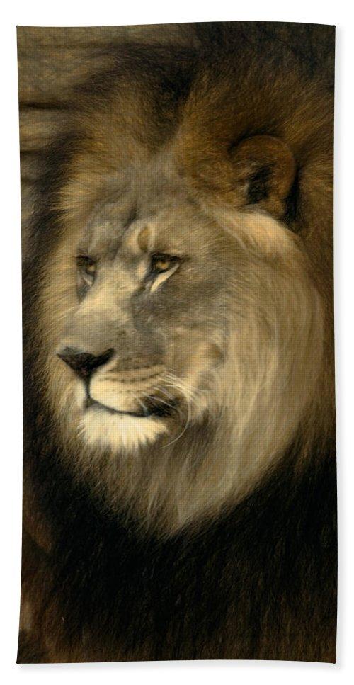 Panthera Leo Bath Sheet featuring the digital art Kofi by Lana Trussell