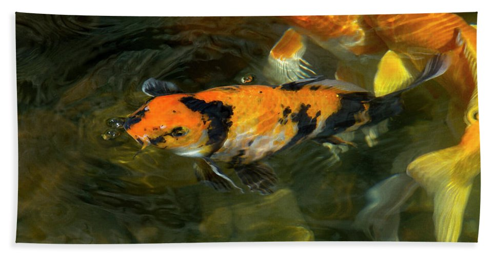 Fish Bath Sheet featuring the photograph Koi Fish Blowing Bubbles by Amy Sorvillo