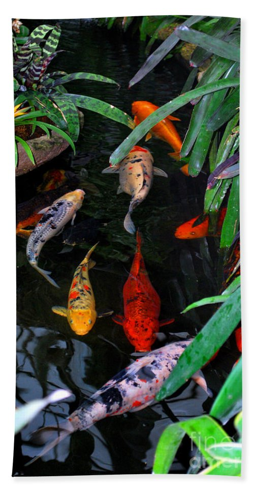 Koi Bath Sheet featuring the photograph Koi Pond by Nancy Mueller