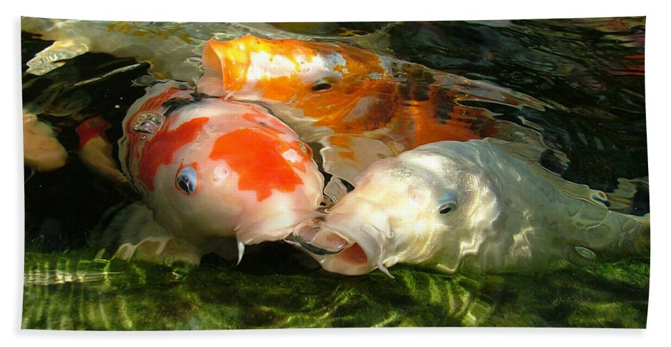 Koi Hand Towel featuring the photograph Koi Ripples by Heather Lennox