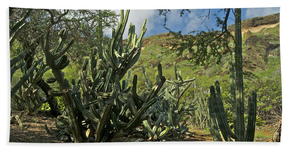 Landscape Hand Towel featuring the photograph Koko Crater by Michael Peychich
