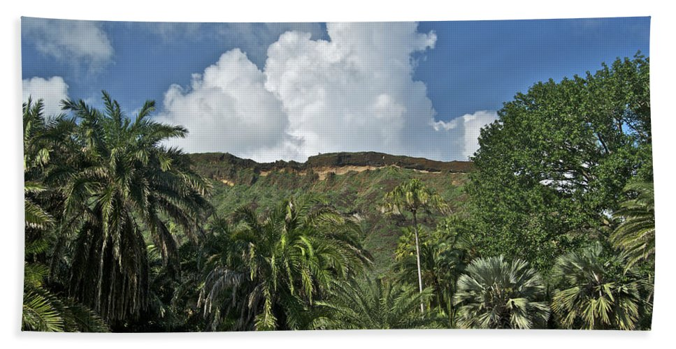 Landscape Hand Towel featuring the photograph Koko Crater Trail by Michael Peychich
