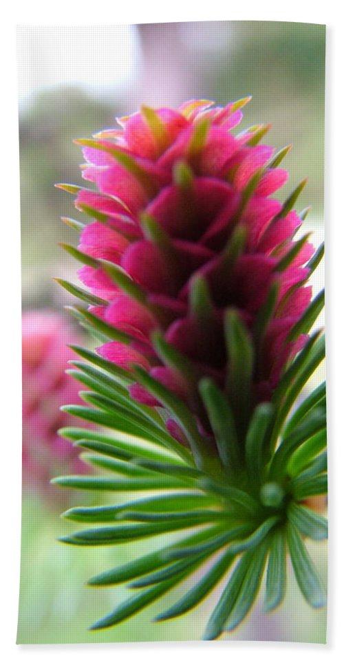 Flower Bath Sheet featuring the photograph Korean Pine by Peter Antos