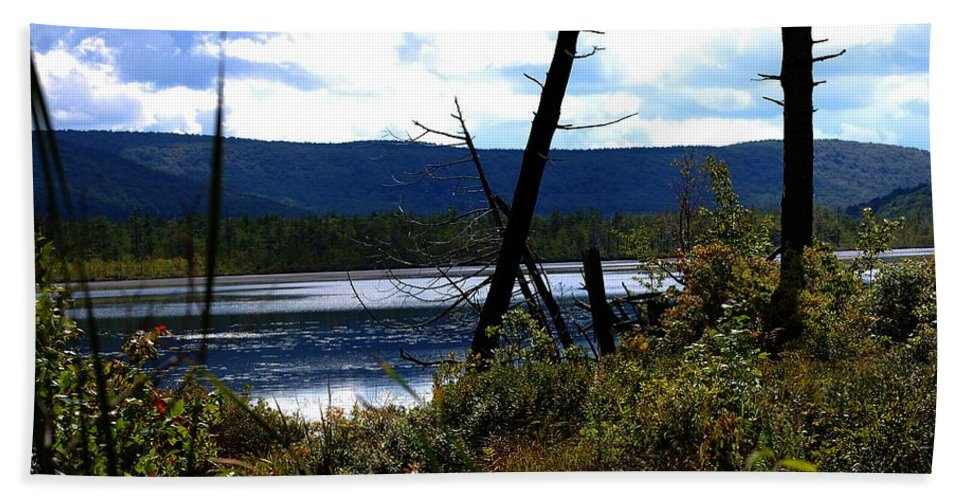 Digital Photograph Bath Towel featuring the photograph Labrador Pond by David Lane