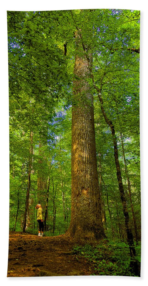 Forest Bath Sheet featuring the painting Lady And The Tree by David Lee Thompson