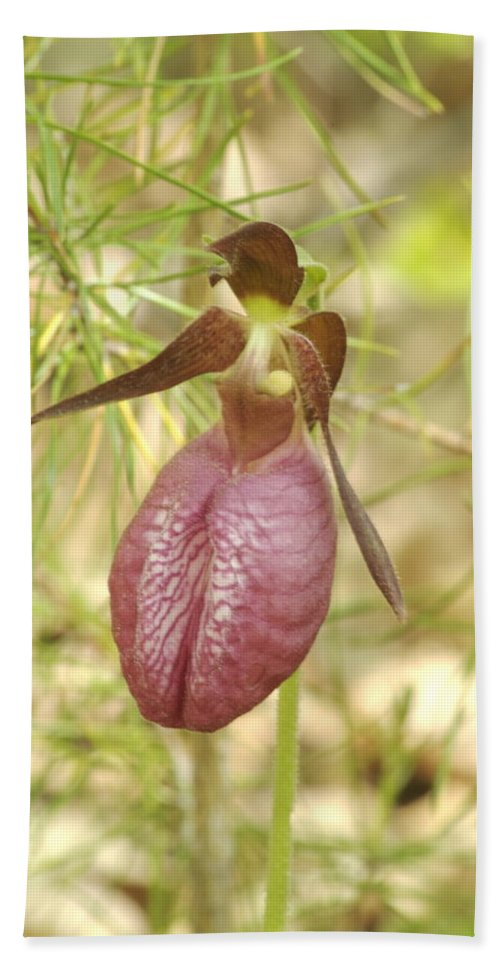 Wildflower Bath Sheet featuring the photograph Lady Slipper Blossom by Michael Peychich