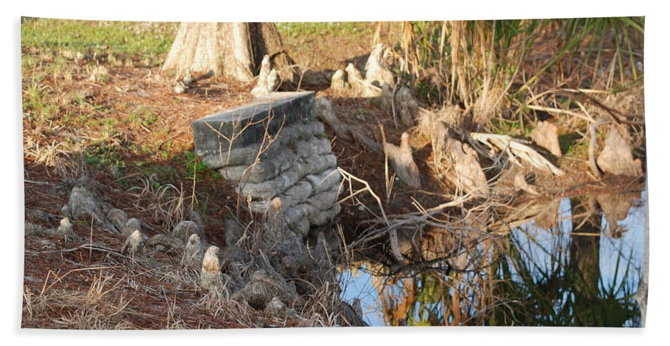 Sunset Hand Towel featuring the photograph Lake Edge by Rob Hans