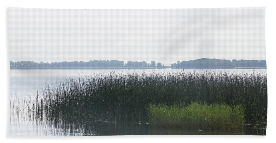Misty Hand Towel featuring the photograph Lake Grasses by Dart and Suze Humeston