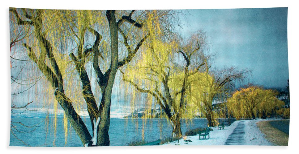 Winter Hand Towel featuring the photograph Lakeshore Walkway In Winter by Tara Turner