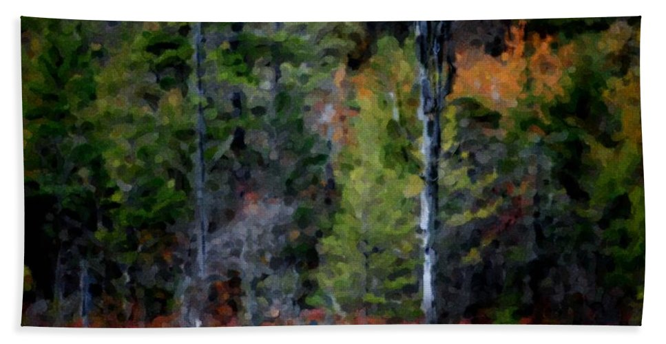 Digital Photograph Hand Towel featuring the photograph Lakeside In The Autumn by David Lane