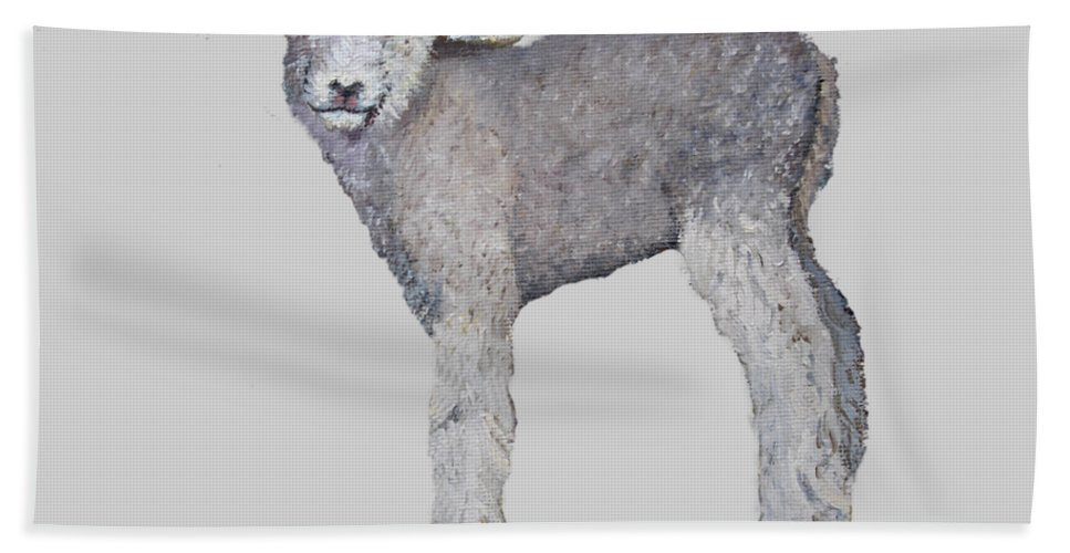 Livestock Hand Towel featuring the painting Lamb by Petra Stephens