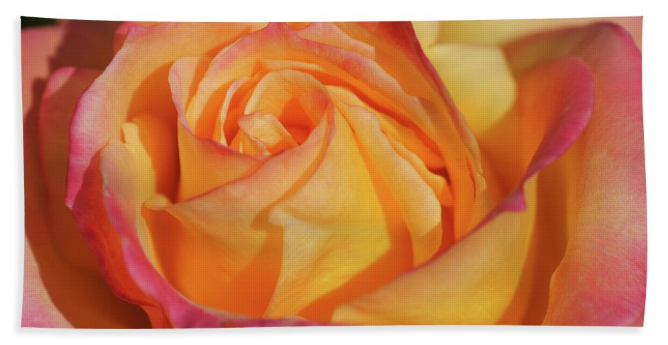 Center Bath Sheet featuring the photograph Large Peace Rose Center 006 by Shirley Heyn