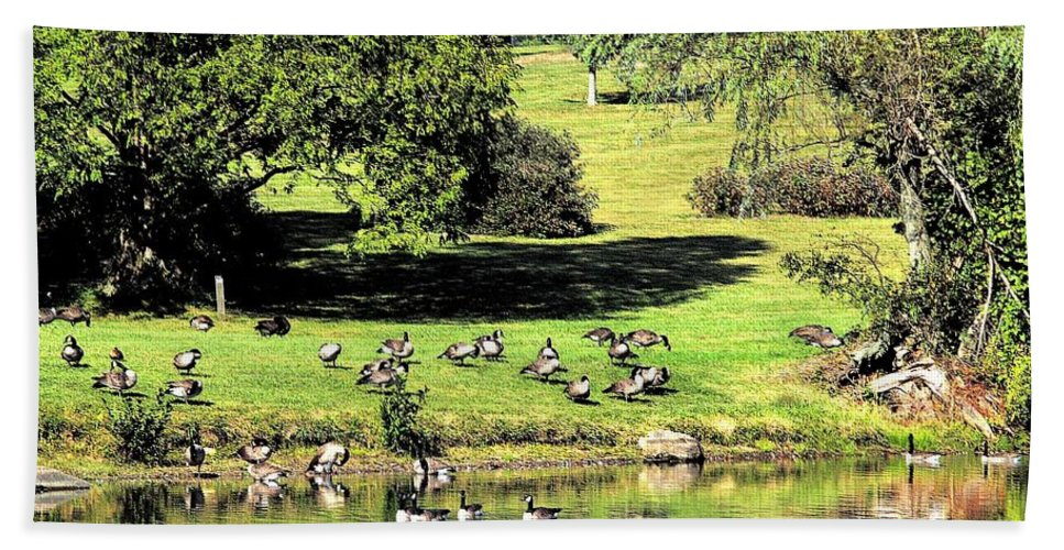 Bird Bath Sheet featuring the photograph Last Days Of Summer by Gaby Swanson