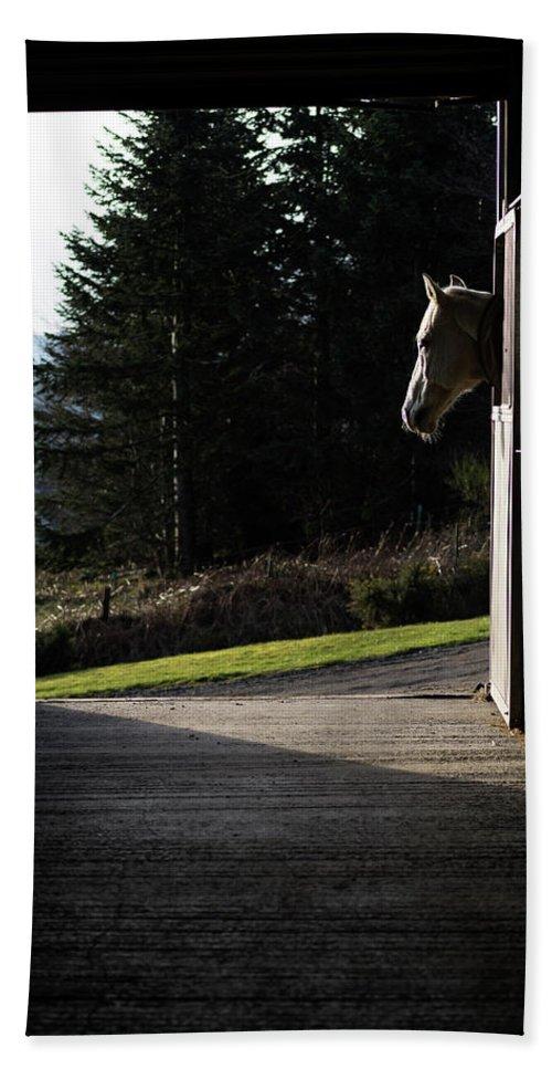 Adult Hand Towel featuring the digital art Last Light by Gary Ellis