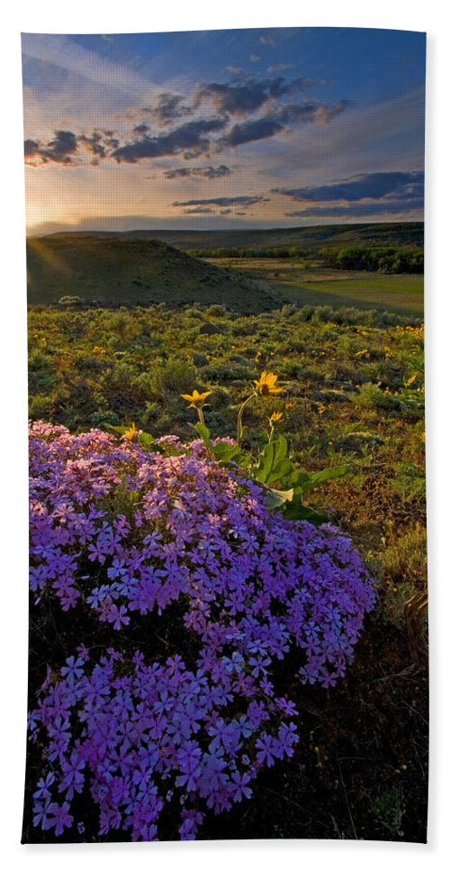 Wildflowers Bath Towel featuring the photograph Last Light Of Spring by Mike Dawson