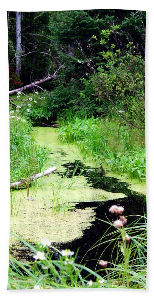 Pine Falls Manitoba Creek Water Bath Towel featuring the photograph Late Summer At The Creek by Joanne Smoley