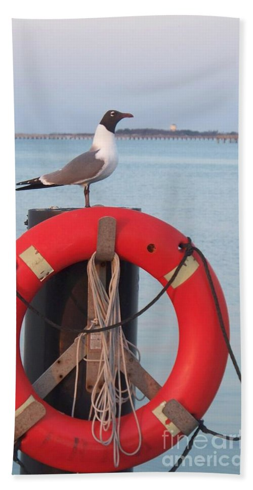 Gull Hand Towel featuring the photograph Laughing Gull At Lewes by Eric Schiabor