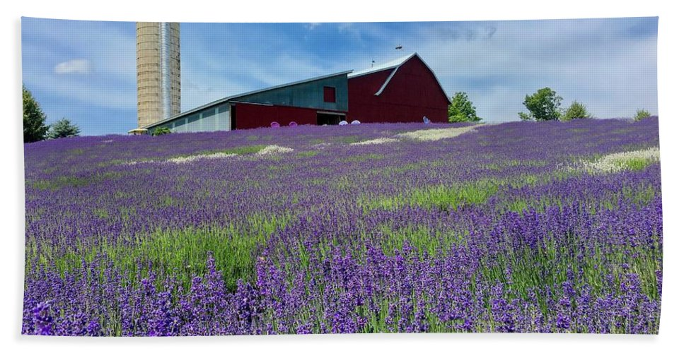 Lavender Bath Sheet featuring the photograph Lavender Fields by Megan Noble