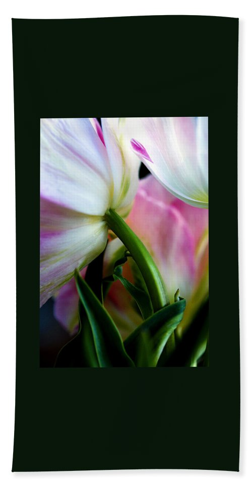 Flower Hand Towel featuring the photograph Layers Of Tulips by Marilyn Hunt