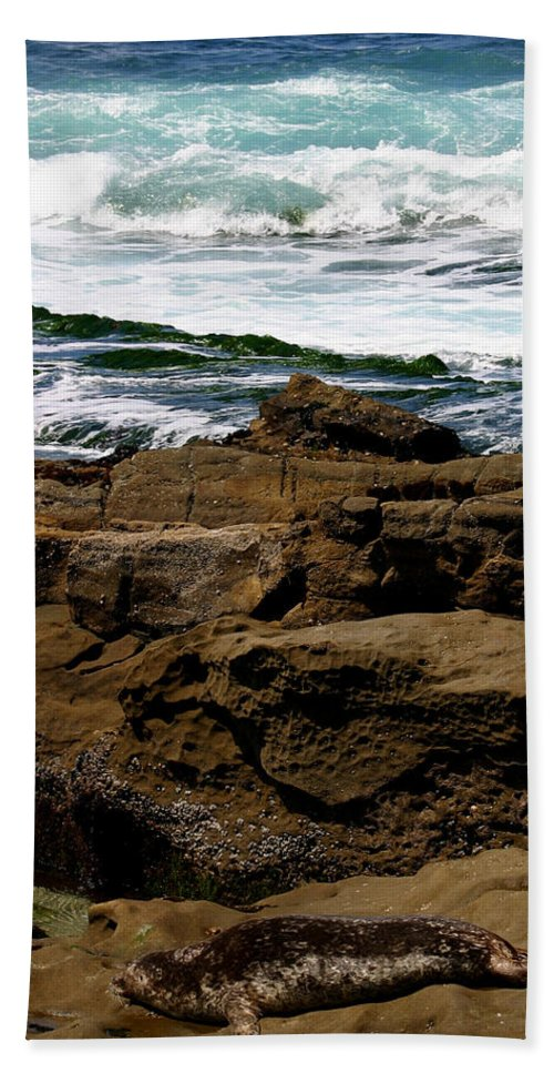 Beach Hand Towel featuring the photograph Lazy Days by Anthony Jones