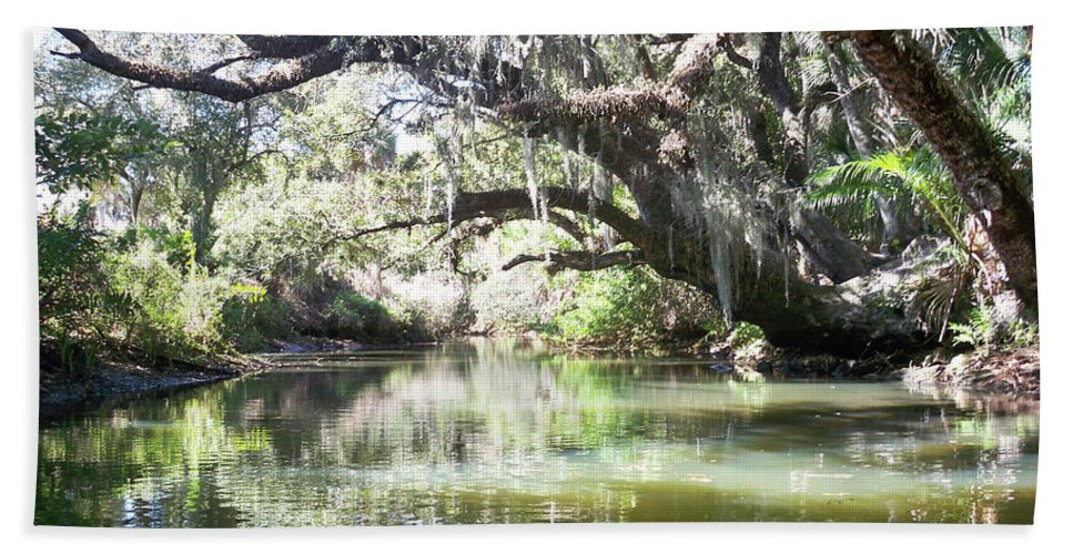 Florida Hand Towel featuring the photograph Lazy River by Chris Andruskiewicz