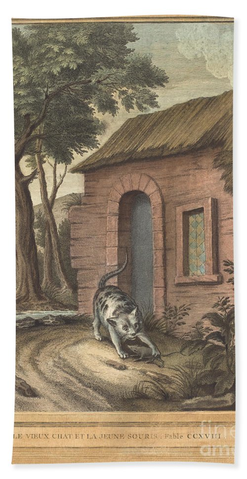 Hand Towel featuring the drawing Le Vieux Chat Et La Jeune Souris (the Old Catand The Young Mouse) by Johann Christoph Teucher After Jean-baptiste Oudry