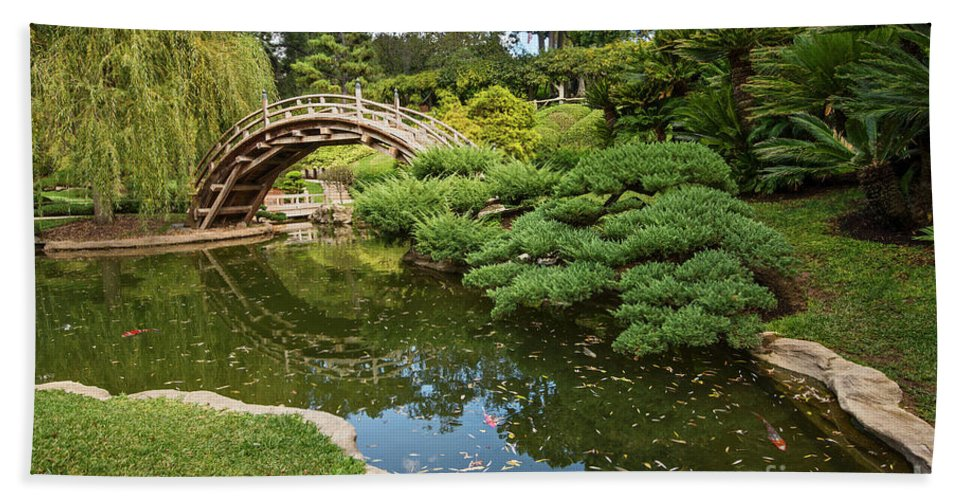Japanese Garden Hand Towel featuring the photograph Lead The Way - The Beautiful Japanese Gardens At The Huntington Library With Koi Swimming. by Jamie Pham