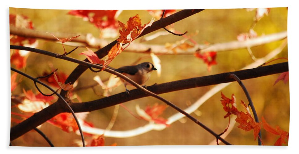 Titmouse Hand Towel featuring the photograph Leaf Me Alone by Lori Tambakis