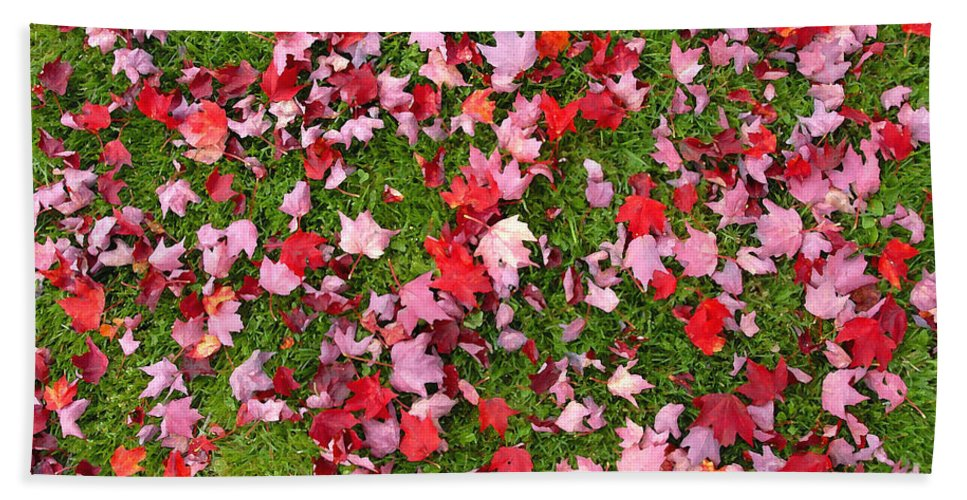 Leafs Bath Sheet featuring the photograph Leafs On Grass by David Lee Thompson