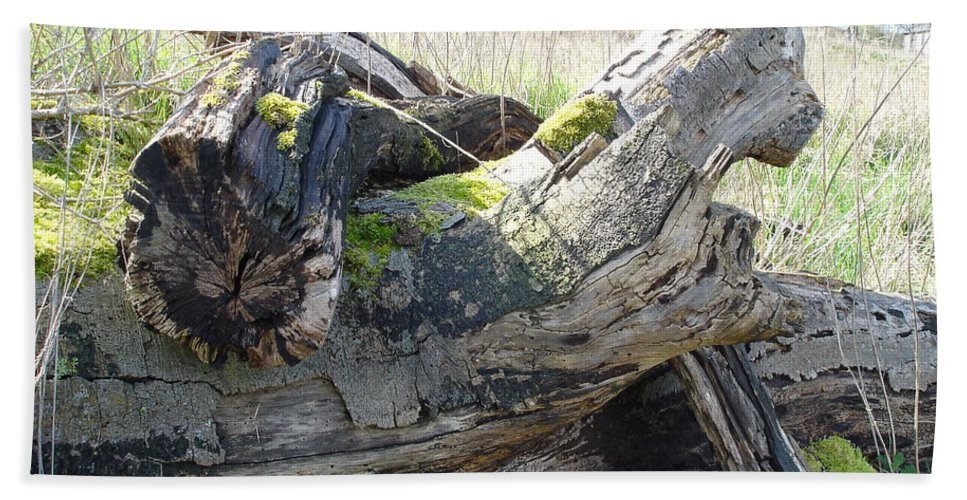 Tree Bath Sheet featuring the photograph Leave Us Be by Susan Baker
