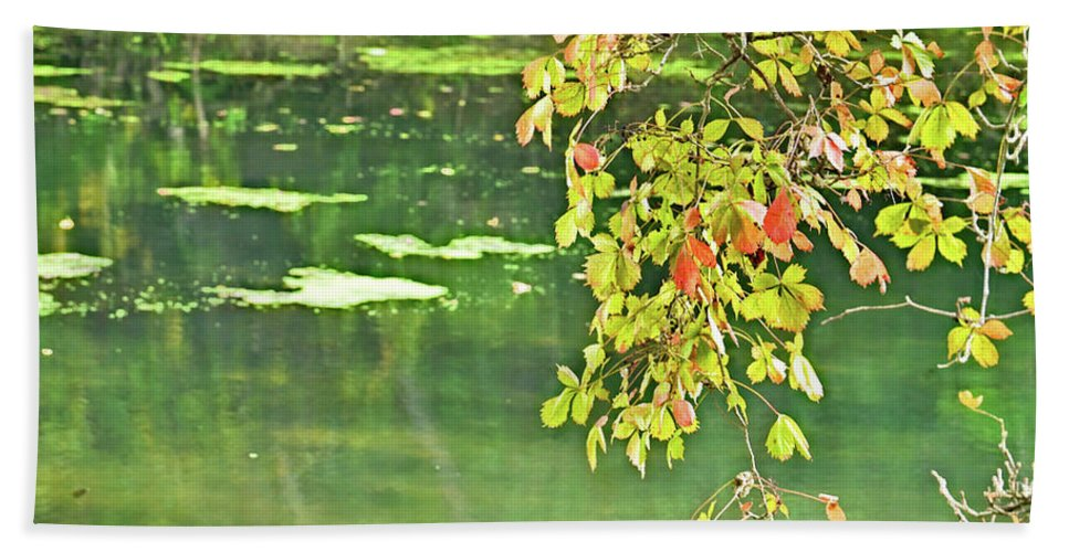 Leaves Hand Towel featuring the photograph Leaves And Water by Gary Richards