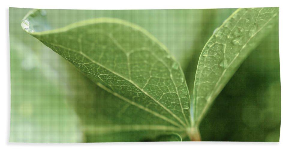 Leaves Bath Sheet featuring the digital art Leaves, Fresh by Terry Davis