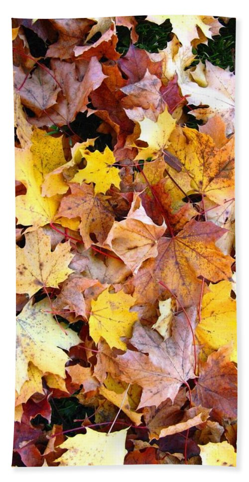 Leaves Bath Towel featuring the photograph Leaves Of Fall by Rhonda Barrett