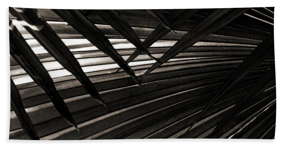 Palm Hand Towel featuring the photograph Leaves Of Palm Black And White by Marilyn Hunt