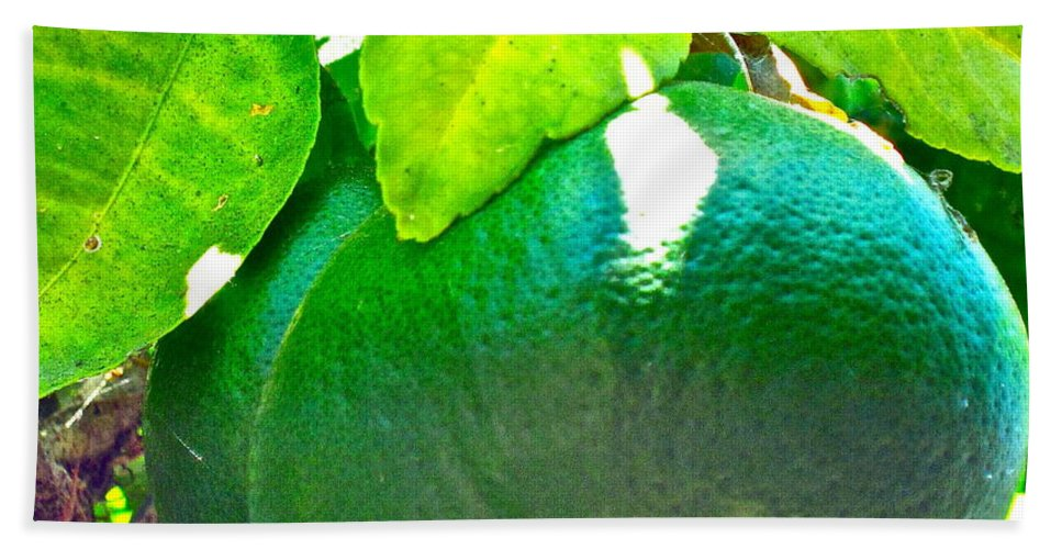Photograph Hand Towel featuring the photograph Lemon Or Lime by Gwyn Newcombe